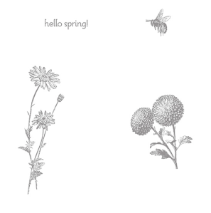 Springtime Hello Stamp Brush Set - Digital Download