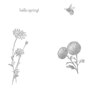 Springtime Hello Stamp Brush Set - Digital Download