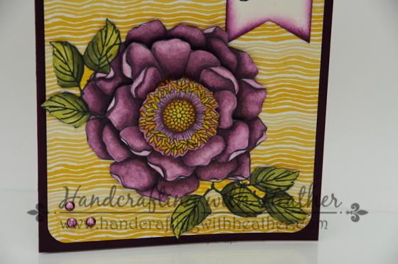 Blended Bloom (6 of 10)