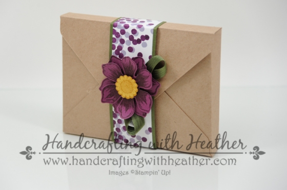 Beautiful Bunch Boxed Set (1 of 10)