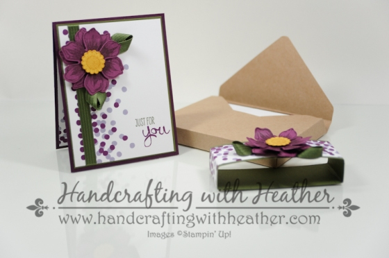 Beautiful Bunch Boxed Set (3 of 10)